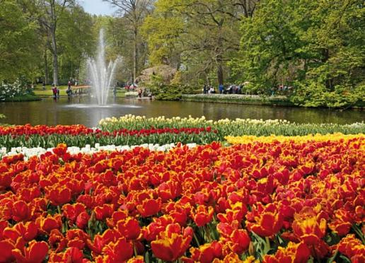 10 Typical Dutch habits